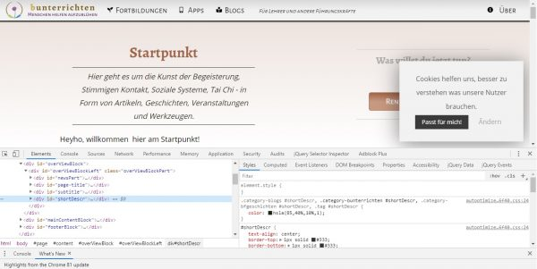 Chrome Webseiten-Inspektor