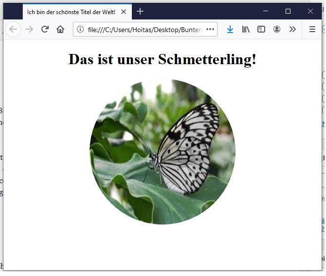 HTML Bilder einfügen 3